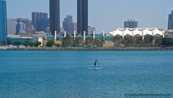 A Paddle Boarder on the Bay